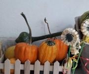 vrtic_dolina_cuda_vozdovac_jesenje_carolije_21_galerija
