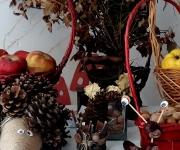 vrtic_dolina_cuda_vozdovac_jesenje_carolije_44_galerija