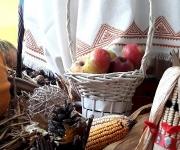 vrtic_dolina_cuda_vozdovac_jesenje_carolije_50_galerija